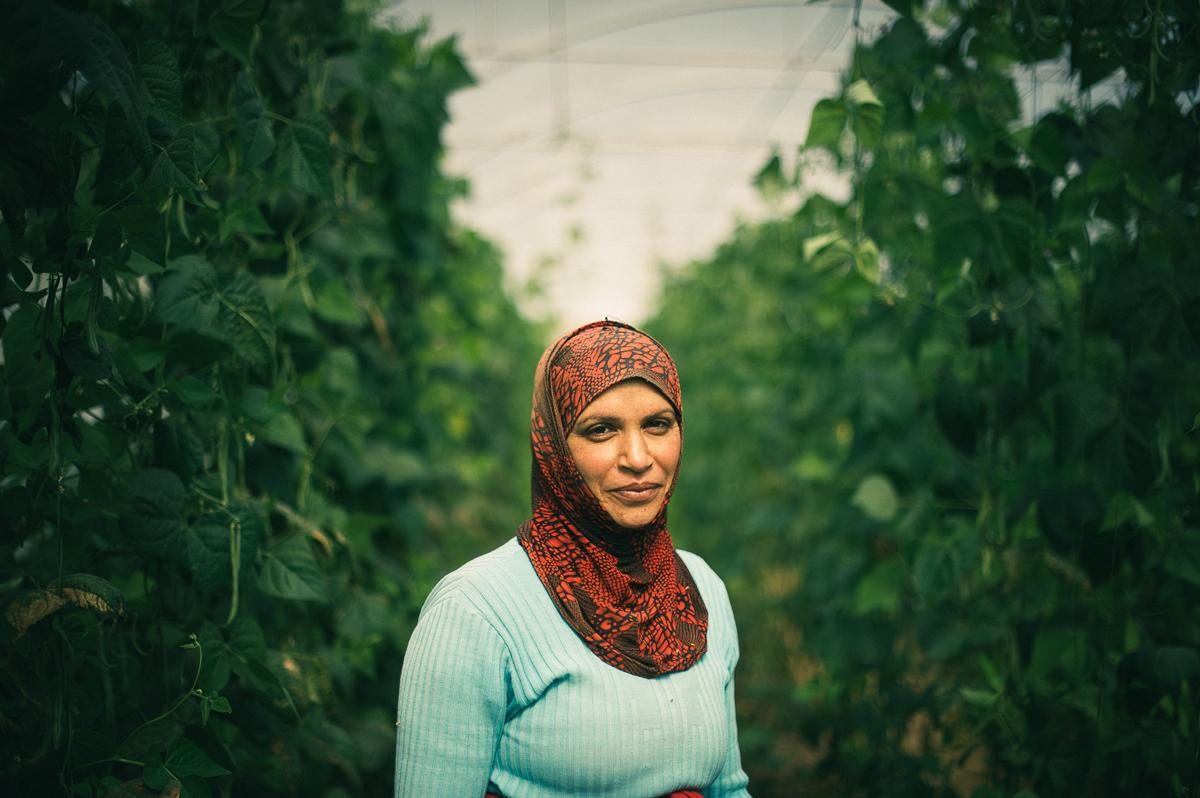 Gracias a la cooperación y al Comercio Justo mujeres de Palestina y Líbano encuentran estabilidad e independencia