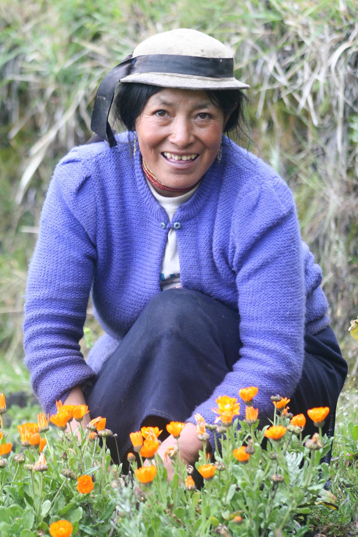 Jambi Kiwa