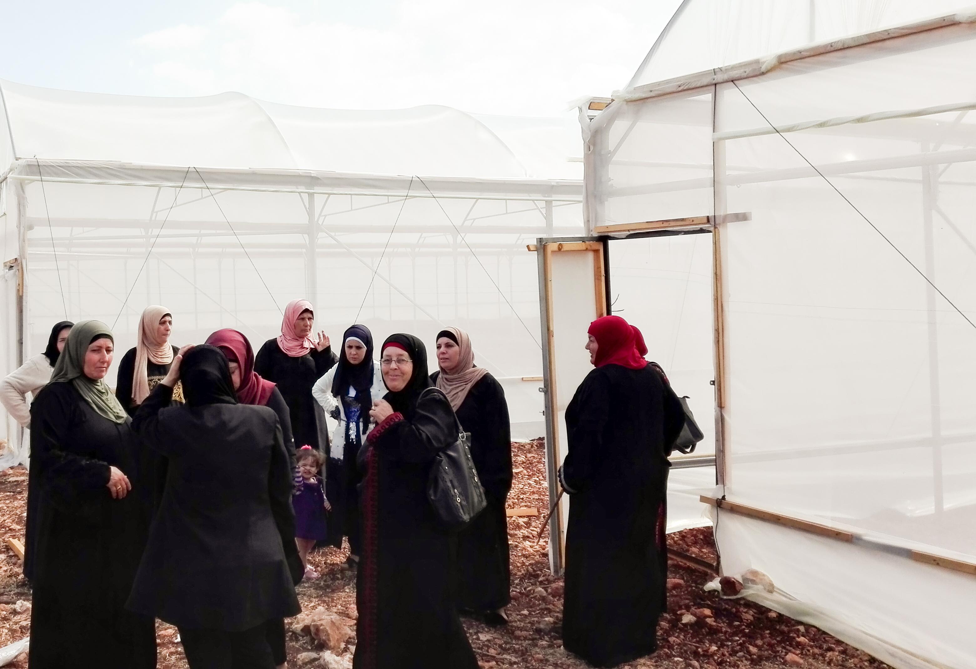 IDEAS con las mujeres palestinas de Cisjordania