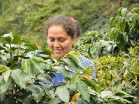 Carmen y Delicia, desde el norte de Perú a las Ciudades por el Comercio Justo de España