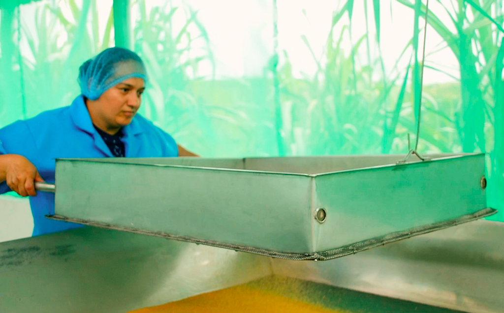 Protegido: Maquita e IDEAS cooperan para impulsar el comercio justo