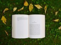 5 libros recientes para veraneantes con cabeza