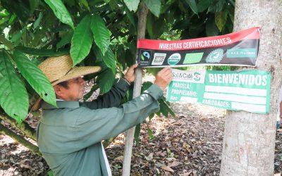 IDEAS en Perú. Diario de viaje